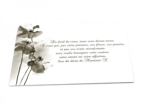Cartes décès fleurs - Coqueliquot sépia