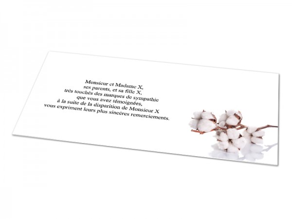 Cartes décès fleurs - Fleur de coton