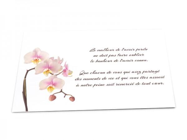 Cartes décès fleurs - Orchidée