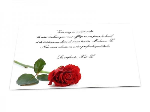 Cartes décès fleurs - Rose rouge posée