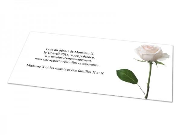 Cartes décès fleurs - Une rose blanche