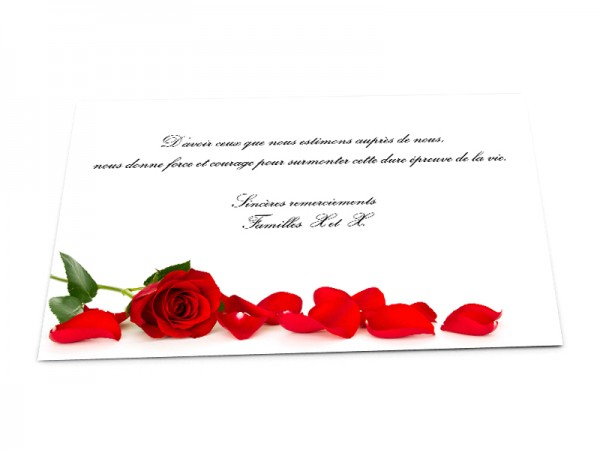 Cartes décès fleurs - Rose rouge et pétales