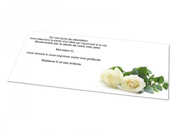 Cartes décès fleurs - Deux roses blanches posées