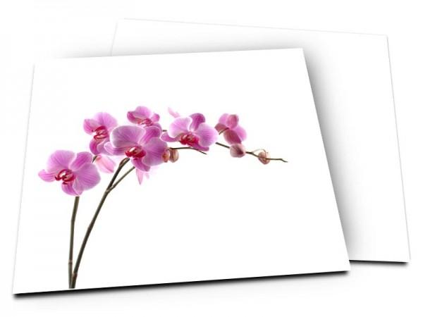 Remerciements mariage - Grâce sensuelle d'une orchidée